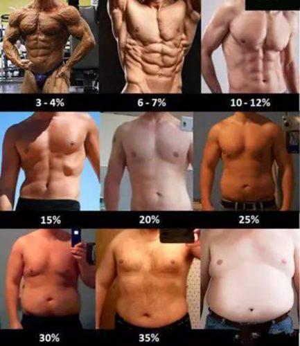 体脂率对照表
