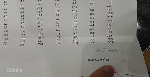 体脂率测量结果
